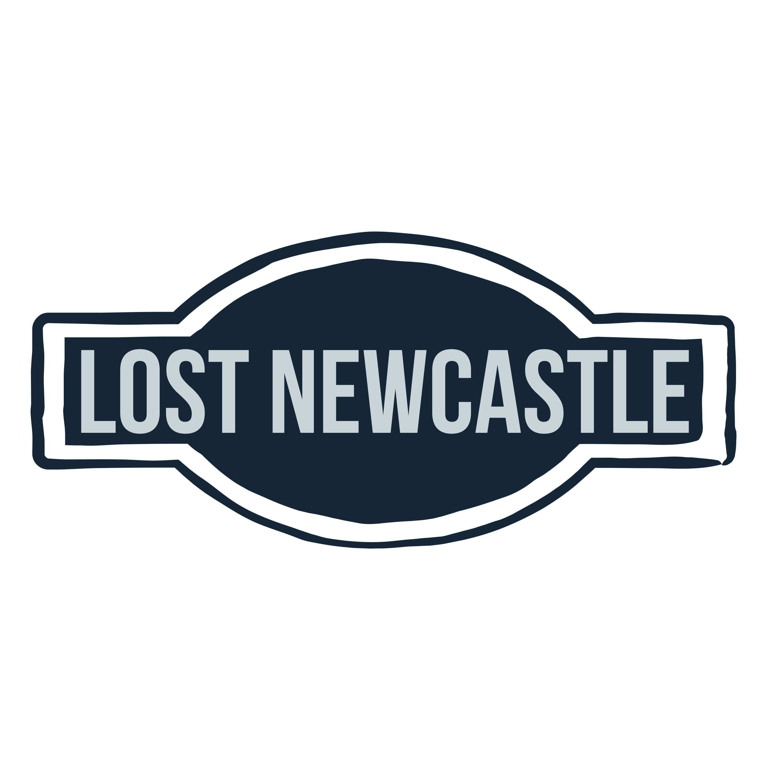 Lost Newcastle